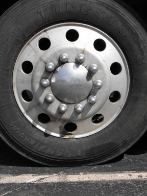 Steer with set of lugnut covers